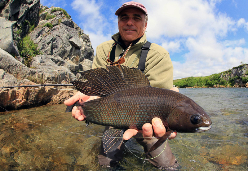 Alaska Grayling 1 of 1 3