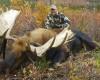 Alaska_Air_Taxi_Tok_Air_15.jpg