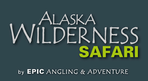Alaska Wilderness Safari